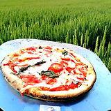 麦畑でピザパーティー_edited.jpg