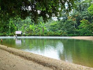 Refresco para o Verão Joinvilense: Parque Ecológico Caminho das Águas