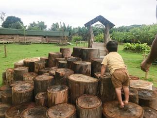 05 Lugares, com Natureza, para Crianças em Joinville.