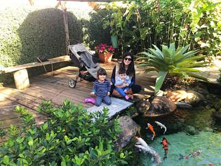 Férias das Crianças! Que tal alimentar os peixes no Jardim de Hemerocallis?