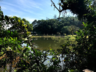 Zoobotânico de Joinville