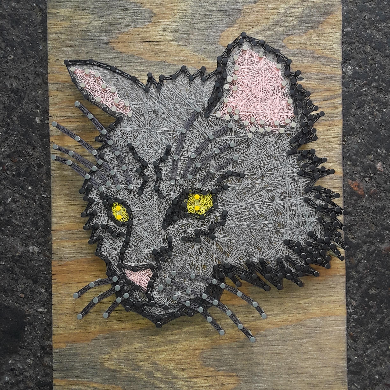 12x8 Cat