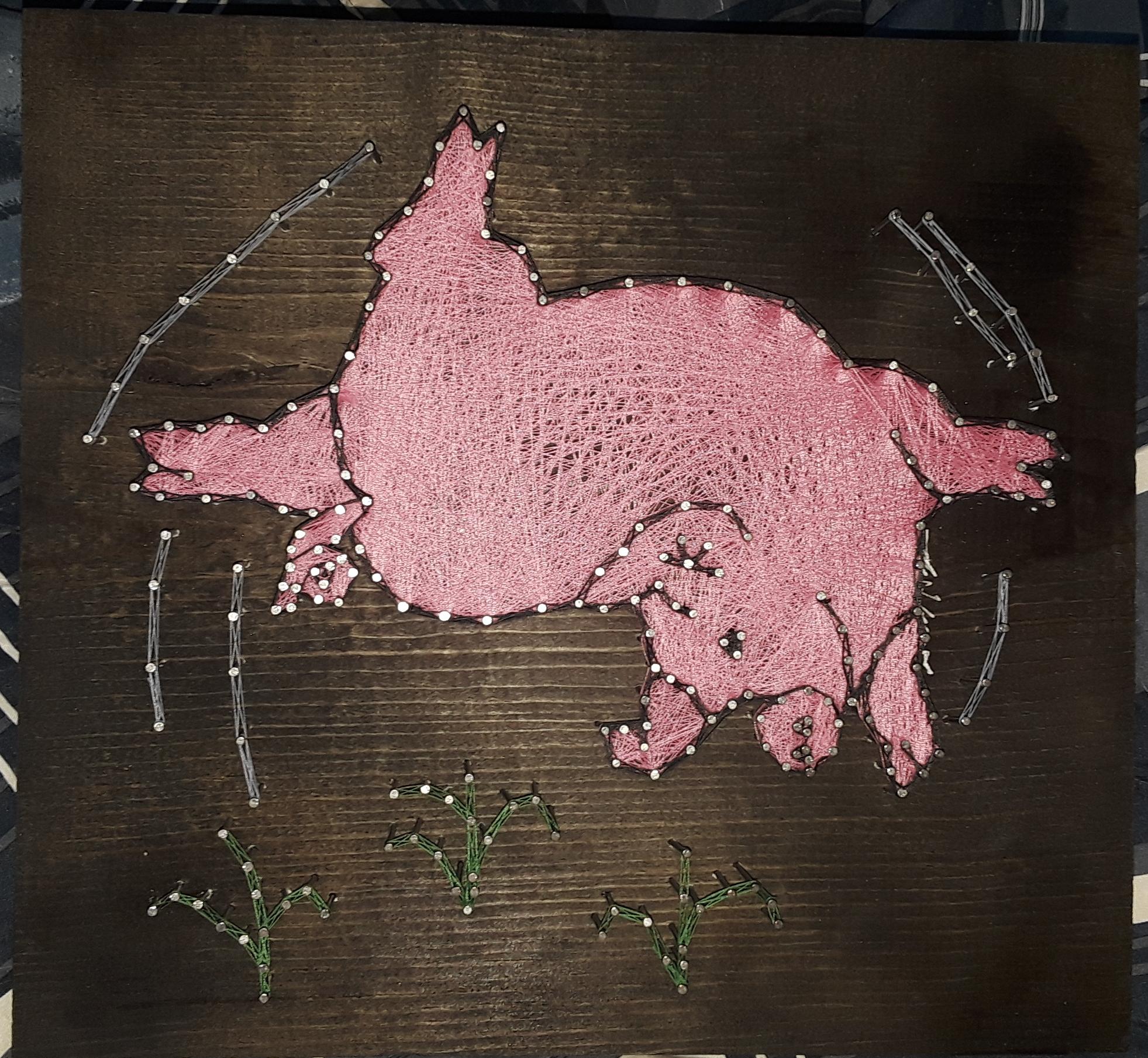 12x12 Pig