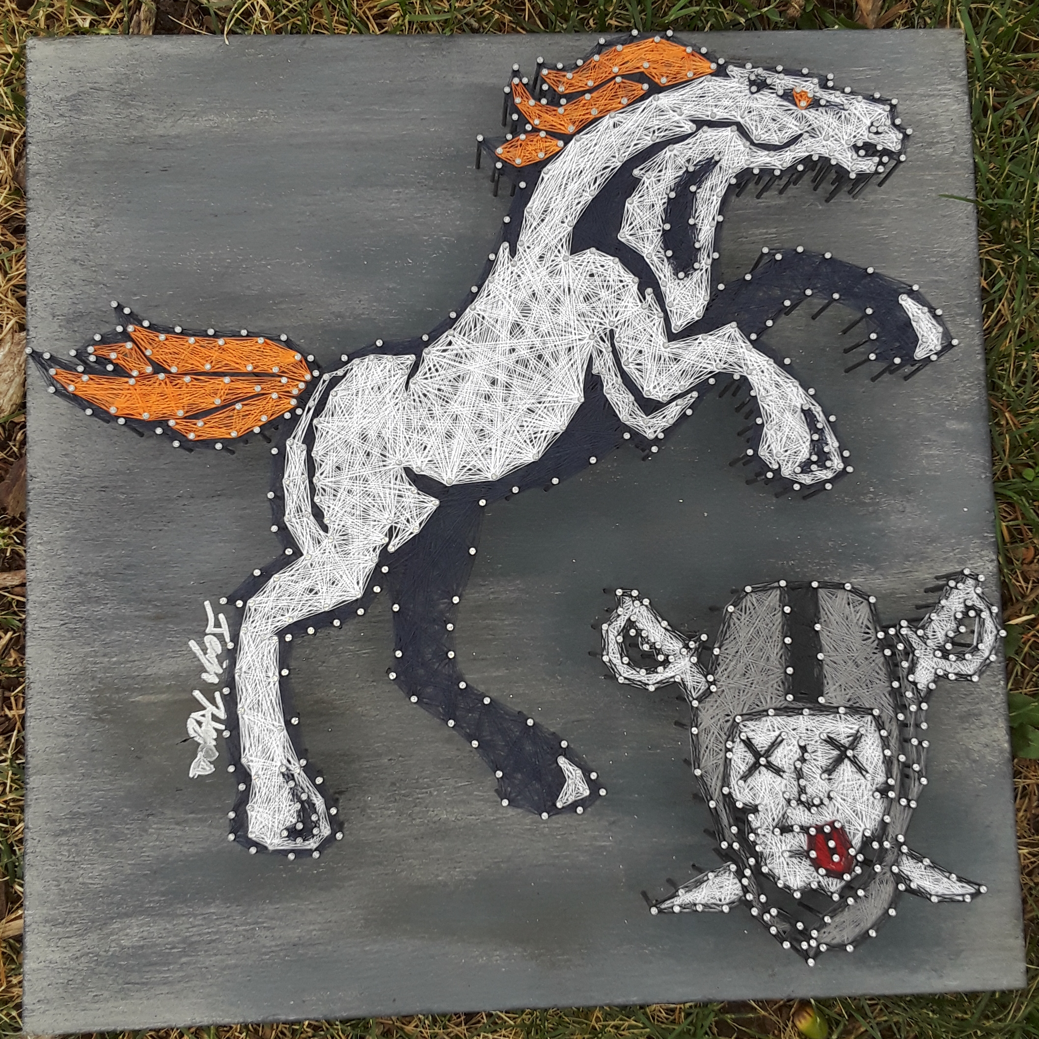 16x16 Broncos/Raiders
