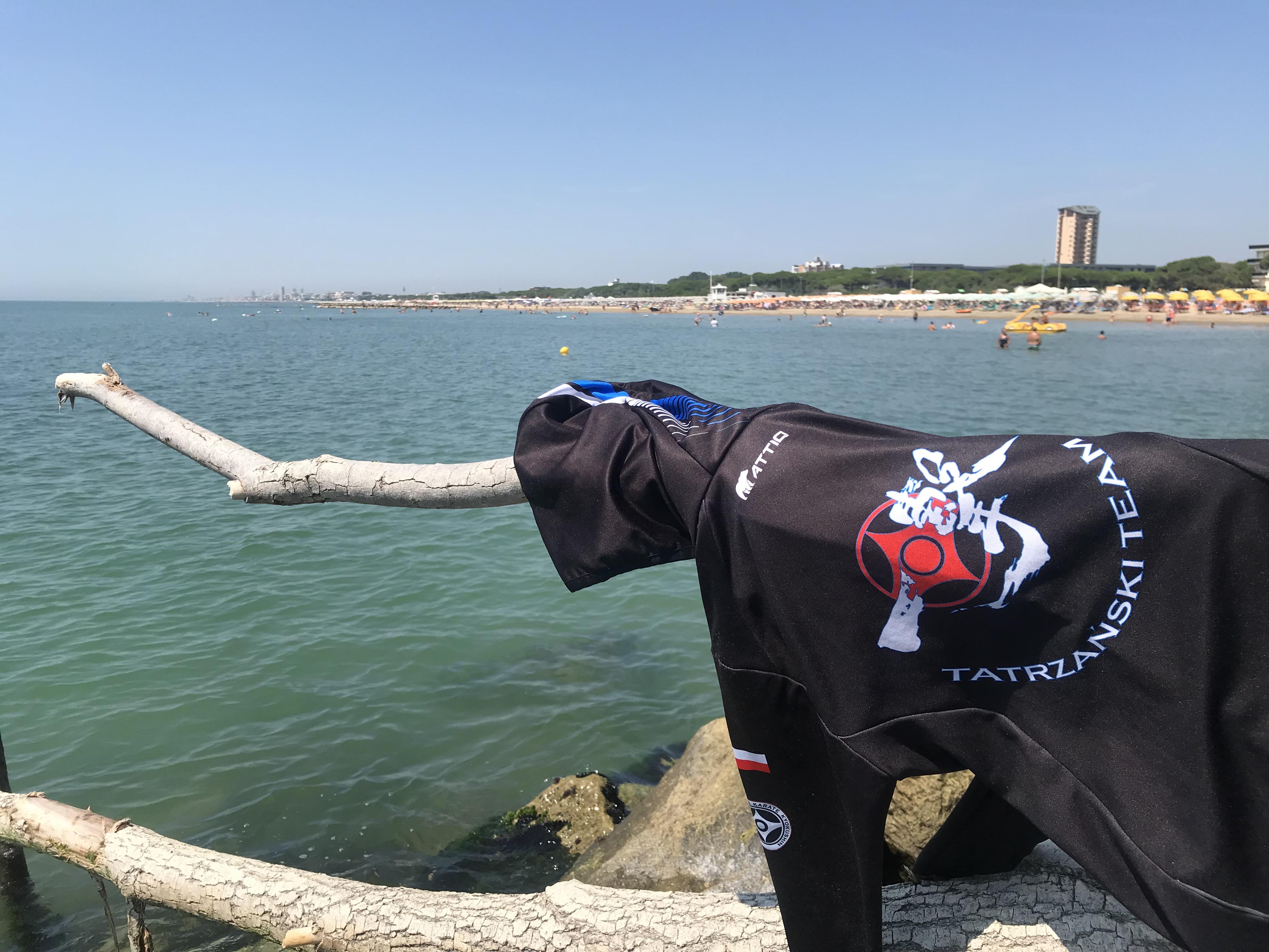 Konkurs lato 2019 z Tatrzański Team