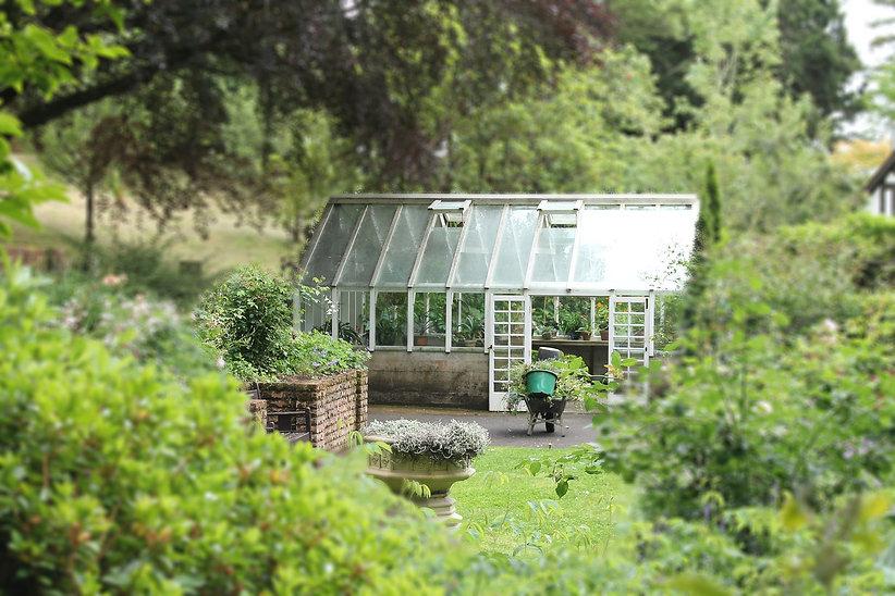 garden-2569959_1920.jpg