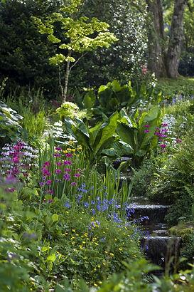 hillside-garden-464017_1920.jpg