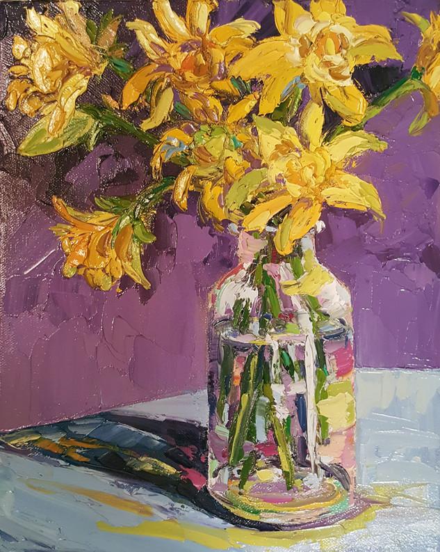Pioneer Daffodils