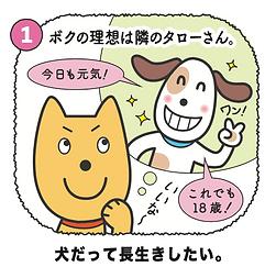 犬の長生きの秘訣