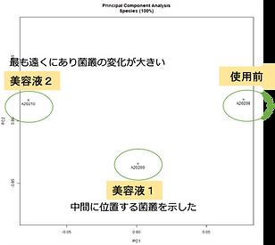 S-KIN PCA解析
