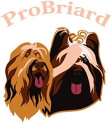 логотип бриар Форте Ет тендре