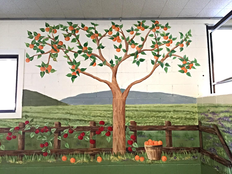 Orange tree and tomato vines