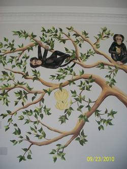 Monkey in large tree