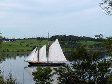 bluenose under full sail in harbour - Co