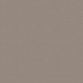 FU-03 Taupe Leather - Frame option