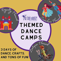 THEMED CAMPS.png