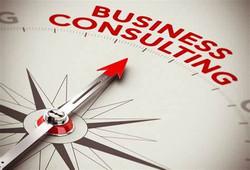 Business consultation with Alex Cenem