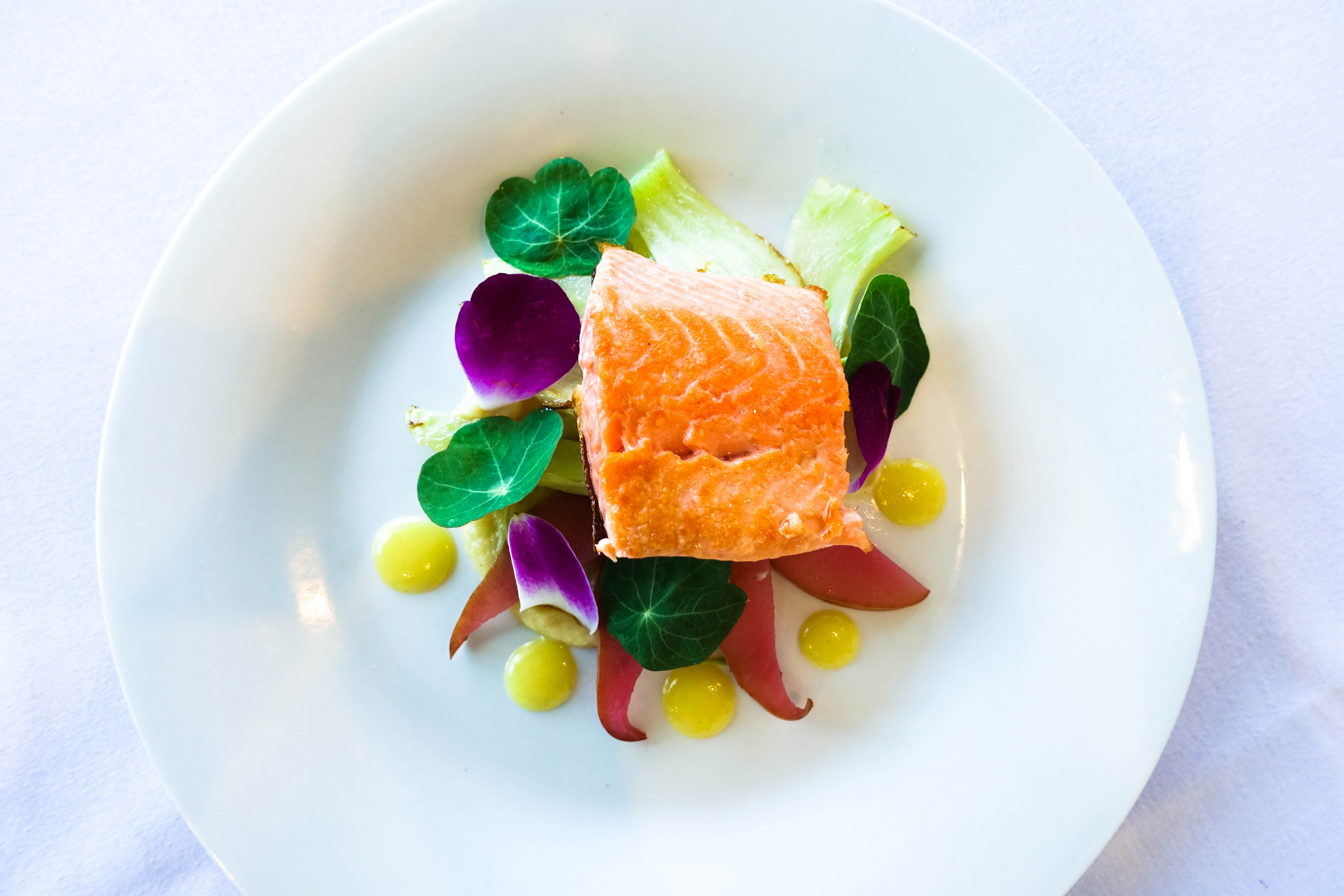 Grilled New Zealand Ora King Salmon