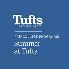 My Online Summer at Tufts