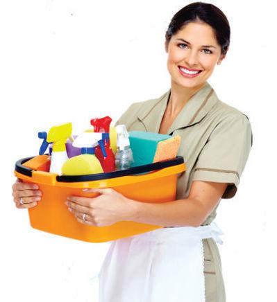 maid service auckland