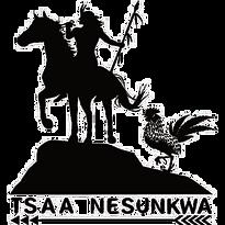 tsaa-logo.png