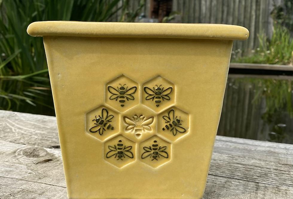 Mini Bee pot