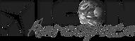 5eb59b20a9889c03c5c93a20_Icon-logo corre