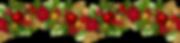 free-christmas-garland-clip-art-7.png