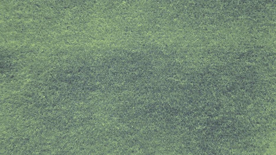 1200-766 Palma