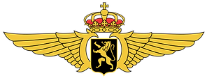 1200px-Belgian_Air_Component_wings.svg.p