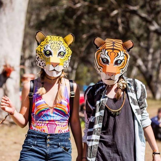 Tiger Mask Kit | partlyanimal