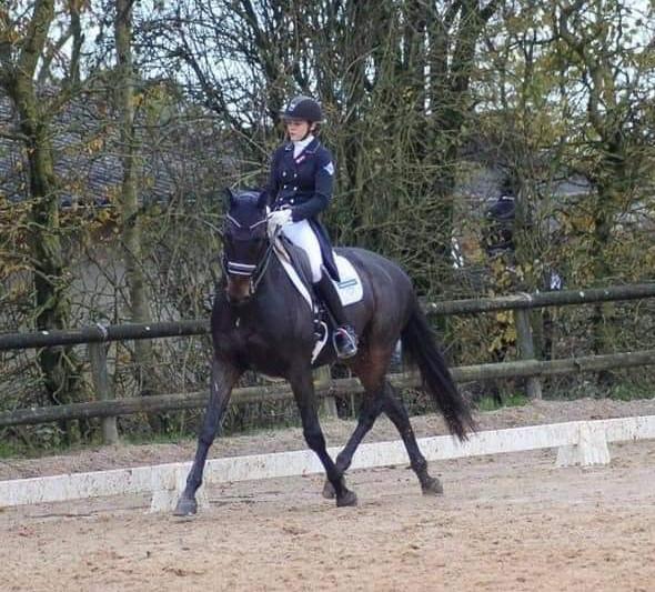 Les 3 erreurs à éviter pour réussir ses épaules en dedans et progresser en équitation avec les chevaux. Terre de Sport Equestre