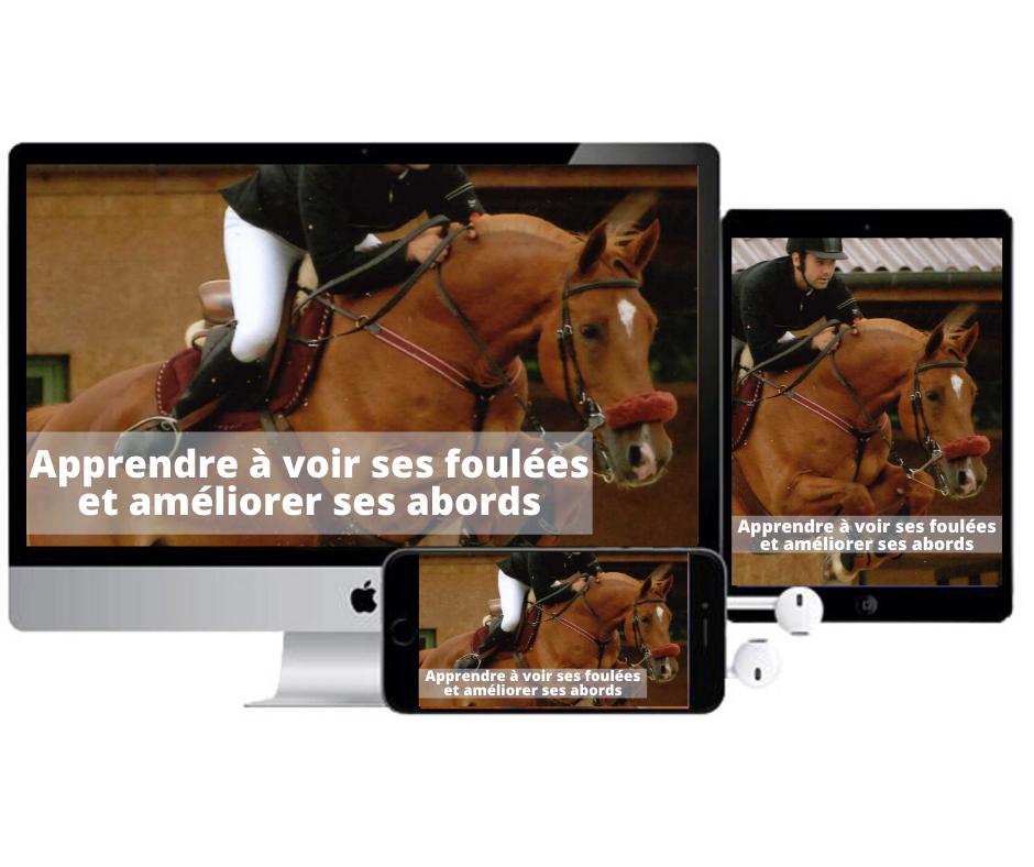 Apprendre à voir ses foulées et améliorer ses abords. Formation de Terre de Sport Equestre