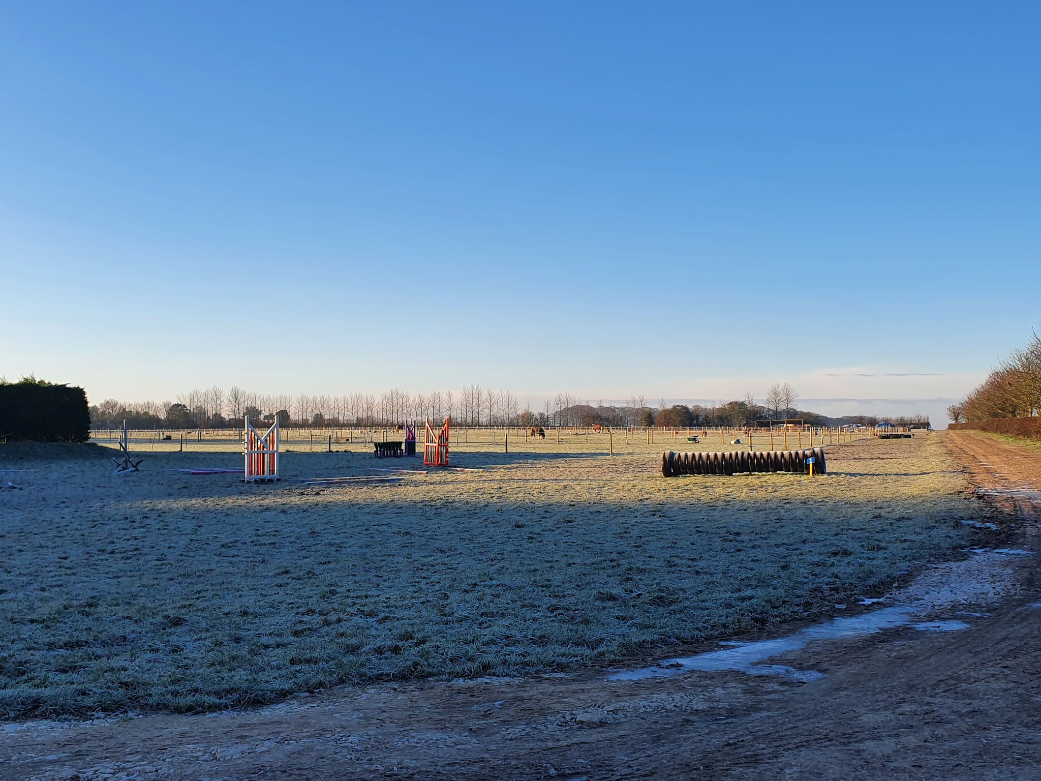 Frosty fields