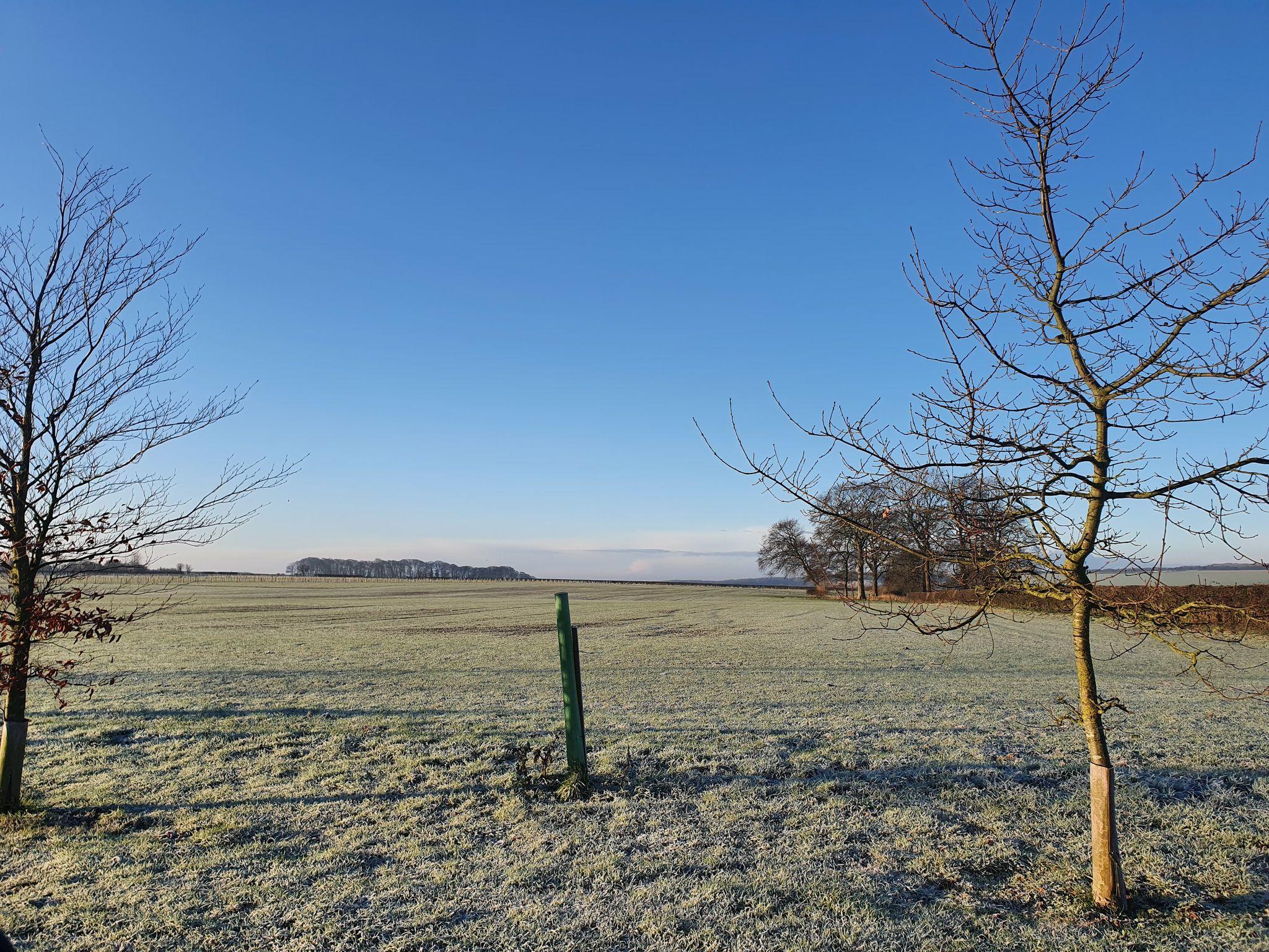 Frosty land