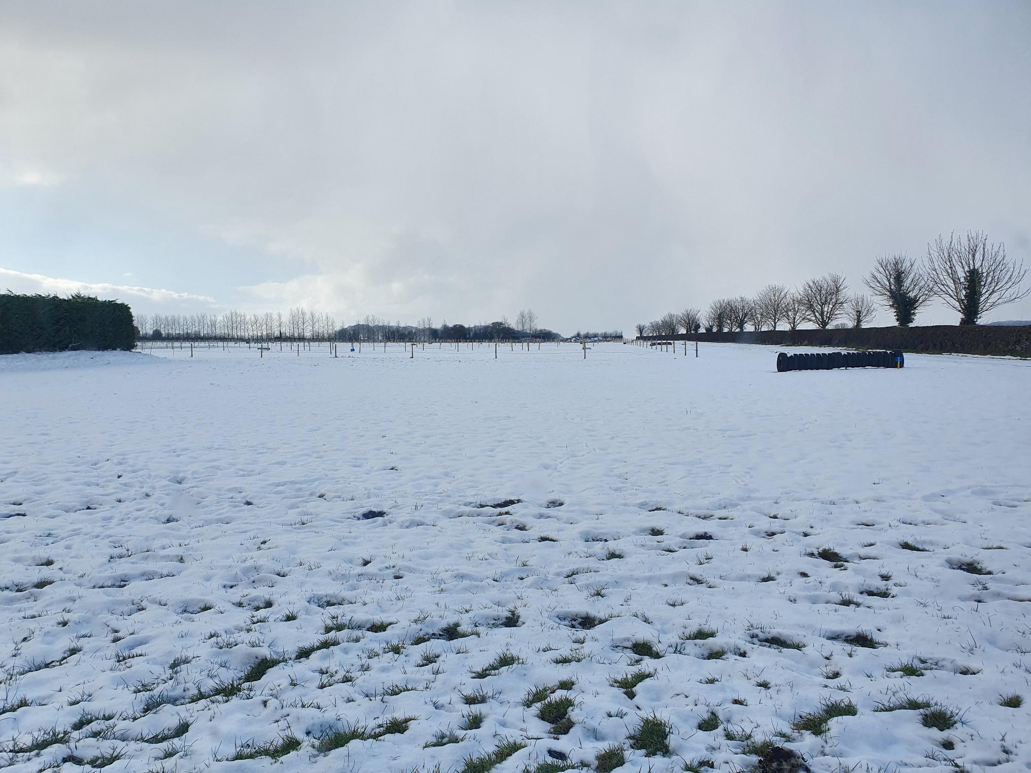 snowy turnout paddocks