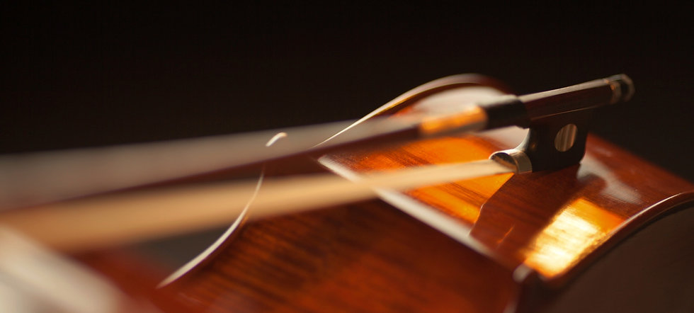 cedar-top-violin-165974_edited_edited_ed