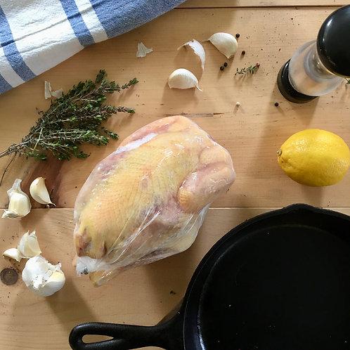 Stewing Hen