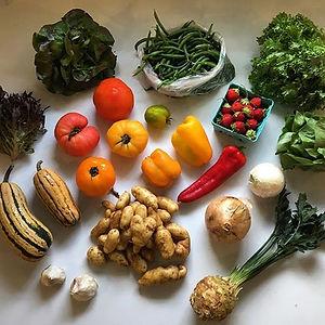 Greenflash Farm New Jersey Farm Share Recipes