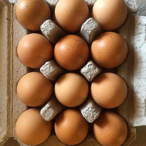 Pasture-raised Egg Share (20 weeks)