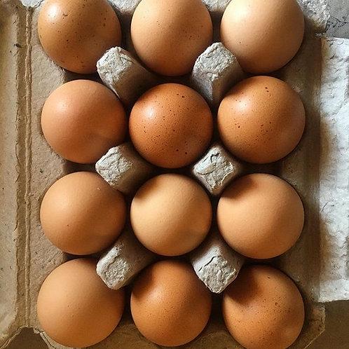 Pasture-raised Eggs