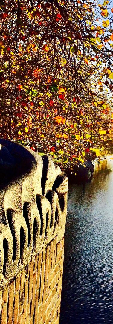 herfst zonnestralen op slangendetail timo smeehuijzenbrug amsterdam zuid met herfstkleuren op prachtige zonnige ochtend