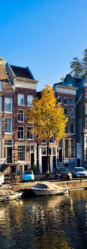 beautiful autumn morning on herengracht with yellow leaves on trees and blue sky