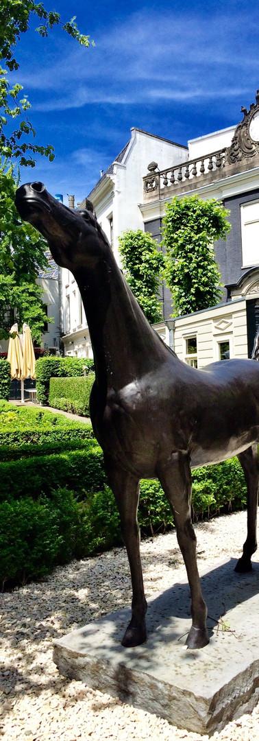 hidden treasures amsterdam courtyard herengracht horse sculpture near lion noir iphoneonly