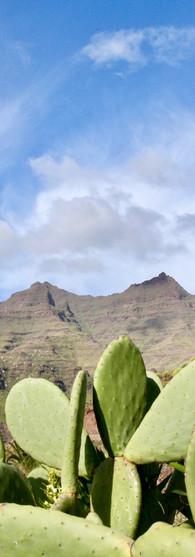 gran canaria mogan cactuses mountains sky nature beauty