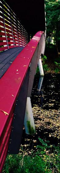 rodebrug amstelpark herfstkleuren