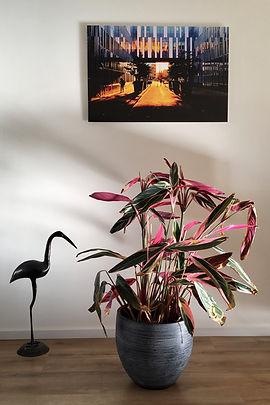 Foto VU passage aan muur thuis.JPG