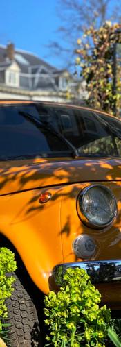 oranje fiat 500 komt uit de struiken gereden op koninginneweg amsterdam