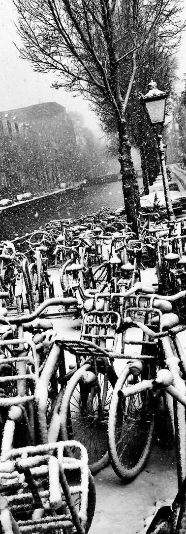 snow winter time bicycles herengracht canal wintertime iphoneonly