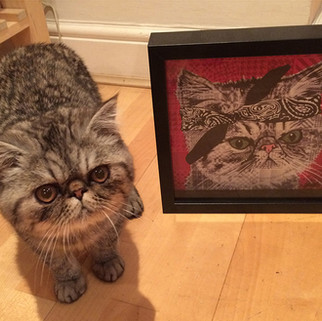 Rose Hill Designs pets with artwork TUPA
